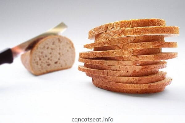 Pieces of Bread