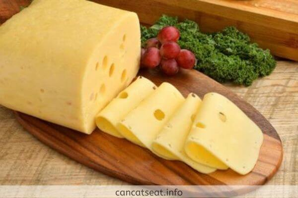 Nutritions of cheese