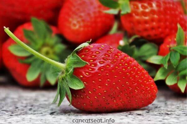 Nutrients of strawberry