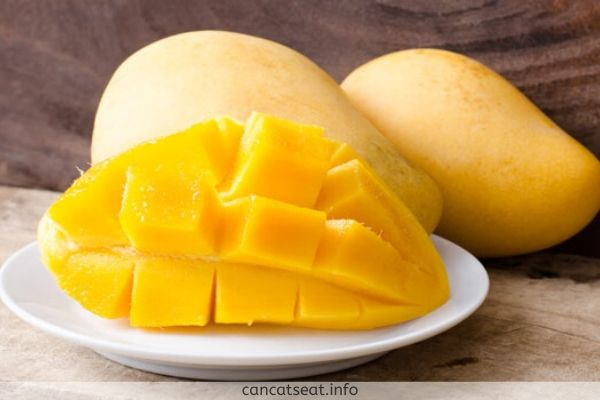 Nutrition Of Mangoes