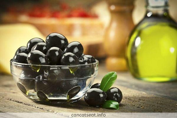 Can-Cats-Easily-Diges- Black-Olives